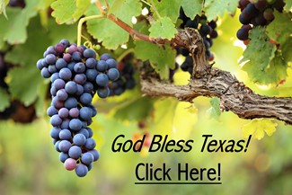 Texas Grapes - God Bless Texas