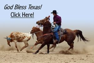 A Cowboy's Lasso catches the Bull - God Bless Texas