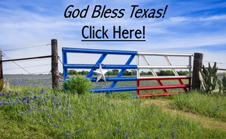 Bluebonnets - God Bless Texas